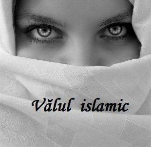 Valul islamic (Hijabul)